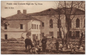 Castelul lui Costache Negri din Târgu-Ocna